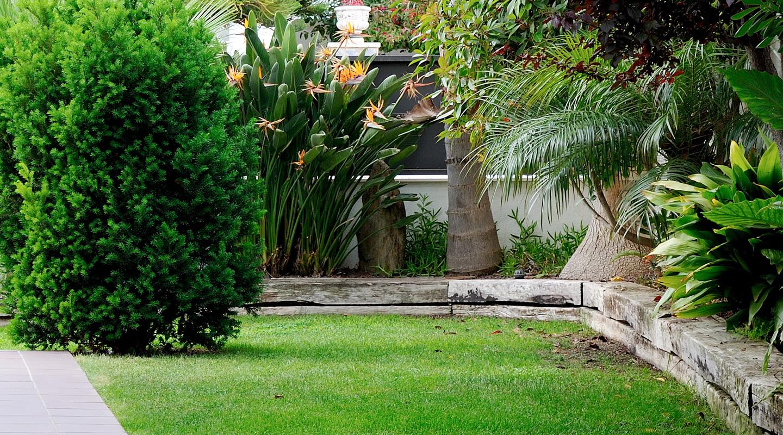 Paisajismo y dise o de jardines en barcelona y tarragona for Paisajismo jardines fotos